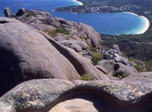 Freycinet Coles Bay Wine Tour